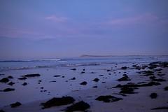 Blue Hour (The Pocket Rocket) Tags: bluehour oceangrovemainbeach dawn oceangrove barwonheadsbluff victoria australia