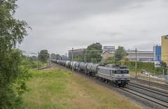 Barneveld 20190706 RFO 1829 + Styreentrein (NS441) Tags: