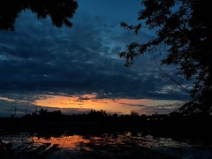Sunrise in Phon Phisai 2019-7-72 (SierraSunrise) Tags: thailand phonphisai nongkhai isaan esarn sky skies sunrise orange bluegray reflections
