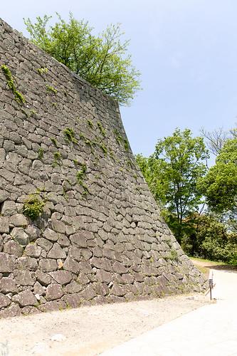 Matsuyama2