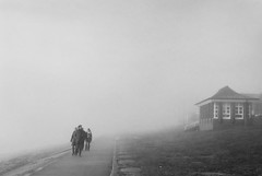 walk into the fog (ro_ha_becker) Tags: leitzsummaron2835mm leicastandardconvleicaii ilfordhp5 meinfilmlab street fog mist nebel analogue film zwartwit monochrome schwarzweiss biancoenero blancetnoir blackandwhite blancoynegro