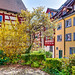 Bodensee / Lake Constance 19. April 2019 -  Meersburg