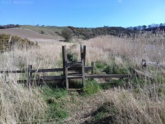 The smallest stile ... (museum 1) Tags: lesbury foxton river aln stile walk path rightofway northumberland