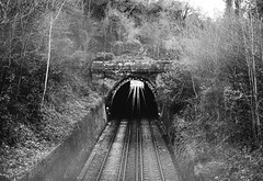 (Max Nathan) Tags: lumixgf1 blackandwhitephotography blackandwhite afternoon winter gonzopsychogeography antonioni blowup nonplace sunlight shadows railway trainlines tunnel maryonpark southlondon cities london england