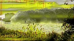 mani-1673 (Pierre-Plante) Tags: art digital abstract manipulation