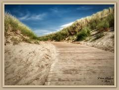 Langeoog (Jürgen von Riegen) Tags: beach clouds strand germany landscape island deutschland lumix wolken insel ostfriesland landschaft langeoog fourthirds mirrorless micro43 lumixg9 green grass gras grün dünen
