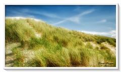 Düne auf Langeoog (Jürgen von Riegen) Tags: beach clouds strand germany landscape island deutschland wolken insel ostfriesland landschaft langeoog lumix fourthirds mirrorless micro43 lumixg9 gras grün dünen green grass