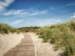 Langeoog (Jürgen von Riegen) Tags: beach clouds strand germany landscape island deutschland wolken insel ostfriesland landschaft langeoog lumix fourthirds mirrorless micro43 lumixg9 green grass gras grün dünen