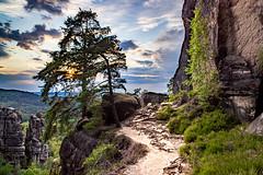 Wie du den Weg auch beschreitest.. Es ist deiner. (aomorin) Tags: affensteine samyang 20mm sunset sächsischeschweiz saxonswitzerland sächsische schweiz saxon switzerland