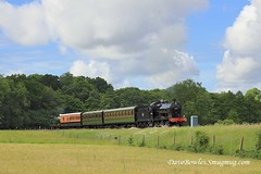 15th June 2019. Road & Rail at the Bluebell (Dangerous44) Tags: hclass 263 qclass 30541 railway goods bluebell