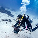 Marcia Scuba Dive Lady Elliot Island-13