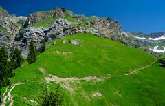 20190626 114232 Bärentrek (55 von 76) (chrhuber) Tags: 2019 6tag alpen bern bärentrek oeschinenseerundweg schweiz urlaub viaalpina wandern wandertour kandersteg kantonbern