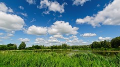 Country of Clouds and Water (Hindrik S) Tags: landscape landschaft lânskip landschap land country lân fryslân friesland netherlands nederland water wetter wasser leau clouds cloud wolken bluesky luft himel hemel lucht summer simmer sommer été piscine waterhole pool poel ditch vijver canal graben sleat sloot tree trees beammen bäume bomen kym kime kimen horizon hoarizon horizont 2019 sigma wideangle 1020 10mm scenicsnotjustlandscapes scenery scenic α77 slta77ii sonyilca77m2 sonyphotographing sony sonyalpha amount minoltaamount on1pics sonya77ii