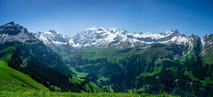 20190625 113250 Bärentrek (40 von 76) (chrhuber) Tags: 2019 5tag alpen bern bärentrek griesalpaabebergkiental panorama schweiz urlaub viaalpina wandern wandertour kiental kantonbern