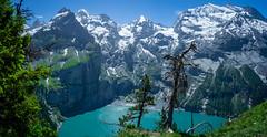 20190626 114137 Bärentrek (54 von 76) (chrhuber) Tags: 2019 6tag alpen bern bärentrek oeschinensee oeschinenseerundweg panorama schweiz urlaub viaalpina wandern wandertour kandersteg kantonbern