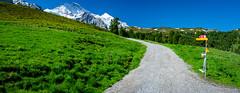 20190623 100637 Bärentrek (21 von 76) (chrhuber) Tags: 2019 3tag alpen alpiglenmürren bern bärentrek panorama schweiz urlaub viaalpina wandern wandertour grindelwald kantonbern
