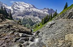 20190626 113009 Bärentrek (53 von 76) (chrhuber) Tags: 2019 6tag alpen bern bärentrek oeschinensee oeschinenseerundweg schweiz urlaub viaalpina wandern wandertour kandersteg kantonbern