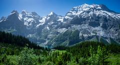 20190626 104130 Bärentrek (51 von 76) (chrhuber) Tags: 2019 6tag alpen bern bärentrek oeschinenseerundweg panorama schweiz urlaub viaalpina wandern wandertour kandersteg kantonbern