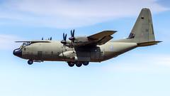 Lockheed Martin C-130J Hercules C.5 ZH889 Royal Air Force (William Musculus) Tags: ramstein air base ab etar rms aviation plane airplane spotting william musculus force lockheed martin hercules c5 zh889 united kingdom royal raf c130 c130j