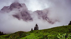 20190622 103438 Bärentrek (14 von 76) (chrhuber) Tags: 2tag 2019 alpen bern bärentrek panorama rosenlauigrindelwald schweiz urlaub viaalpina wandern wandertour meiringen kantonbern