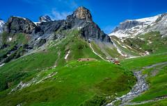 20190624 103850 Bärentrek (36 von 76) (chrhuber) Tags: 2019 4tag alpen bern bärentrek mürrenrotstockhüttemürren schweiz urlaub viaalpina wandern wandertour mürren kantonbern