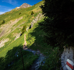 20190624 095318 Bärentrek (35 von 76) (chrhuber) Tags: 2019 4tag alpen bern bärentrek mürrenrotstockhüttemürren schweiz urlaub viaalpina wandern wandertour gimmelwald kantonbern