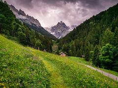 20190621 140415 Bärentrek (1 von 76) (chrhuber) Tags: schweiz urlaub bern alpen 2019 1tag viaalpina bärentrek meiringenrosenlaui wandern meiringen kantonbern wandertour