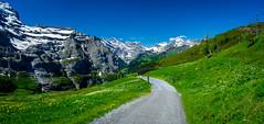 20190623 113654 Bärentrek (26 von 76) (chrhuber) Tags: 2019 3tag alpen alpiglenmürren bern bärentrek panorama schweiz urlaub viaalpina wandern wandertour wengenbe kantonbern