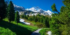 20190623 101646 Bärentrek (22 von 76) (chrhuber) Tags: 2019 3tag alpen alpiglenmürren bern bärentrek panorama schweiz urlaub viaalpina wandern wandertour grindelwald kantonbern