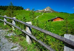 20190623 093952 Bärentrek (20 von 76) (chrhuber) Tags: 2019 3tag alpen alpiglenmürren bern bärentrek schweiz urlaub viaalpina wandern wandertour grindelwald kantonbern