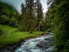 20190622 093644 Bärentrek (10 von 76) (chrhuber) Tags: 2tag 2019 alpen bern bärentrek rosenlauigrindelwald schweiz urlaub viaalpina wandern wandertour meiringen kantonbern