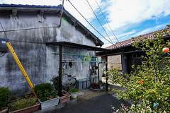 海塚長屋 (m-louis) Tags: house plant bicycle japan laundry 大阪 日本 osaka 家 j5 貝塚 rsg 長屋 集合住宅 kaizuka nikon1 6713mm 海塚