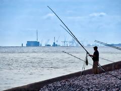 Rods and cranes (Nevrimski) Tags: fishing hinkley point sea cranes