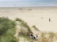 Photo of Pembrey Country Park - Sunday beach heaven walk