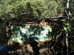 Sydney Olympic Park: Ship Wreck Lookout (fchmksfkcb) Tags: sydneyshowgrounds giantsstadium groundhopping greater western sydney giants brisbane lions australia australien australianfootball afl sydneygiants gwsgiants greaterwesternsydneygiants brisbanelions
