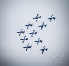 Frecce tricolori (Djguitou) Tags: avion aérien armée meeting meetingaérien militaire show voltige patrouille