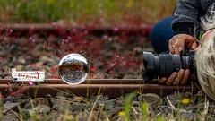 making of ... (Roger Armutat) Tags: glaskugel glaskugelfotografie fotograf waggon seefisch sony lightroom