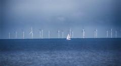 Wind power (Gill Stafford) Tags: gillstafford gillys image photograph wales northwales conwy abergele wind power turbines sea sailingelectricity windfarm'irish