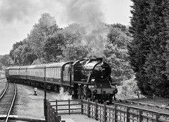 Great Central Railway Rothley Leicestershire 6th July 2019 (loose_grip_99) Tags: greatcentral railway railroad rail train rothley leicestershire eastmidlands england uk steam engine locomotive gassteam blackwhite noiretblanc preservation transportation lms stanier 8f 280 48305 station uksteam footplate trains railways july 2019
