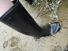 Nora sinking in (essex_mud_explorer) Tags: wellies wellingtons wellingtonboots mud muddy mudflats tidal estuary creek marsh saltmarshes saltmarsh nora dolomit rubberlaarzen gummistiefel gumboots rainboots matsch schlamm boue welliesinmud