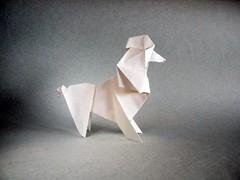 Poodle - Tong Liu (Rui.Roda) Tags: origami papiroflexia papierfalten dog chien cão perro poodle tong liu