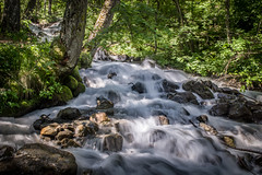 Torrent (Rense Haveman) Tags: alpen france alps water landscape holidays torrent écrins rensehaveman pentaxkp vakantiefrankrijk2019 longexposure trees motionblur