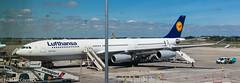 D-AIGS Lufthansa Airbus A340-313 (Niall McCormick) Tags: dublin airport eidw aircraft airliner dub daigs lufthansa airbus a340313 a343