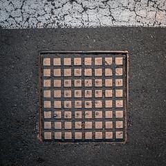 Coppery Cover (Steve Crane) Tags: street southafrica photowalk manhole manholecover stellenbosch boland westerncape kelby 2017 1×1 square