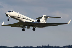 N175NH_02 (GH@BHD) Tags: n175nh gulfstreamaerospace gulfstream g5 guv g550 tvpxaircraftsolutions bhd egac belfastcityairport bizjet corporate executive aircraft aviation