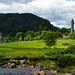 2019-06-07 06-22 Irland 839 Wicklow Mountains, Glendalough