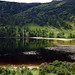 2019-06-07 06-22 Irland 836 Wicklow Mountains, Glendalough, Upper Lake