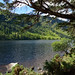 2019-06-07 06-22 Irland 826 Wicklow Mountains, Glendalough, Upper Lake