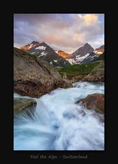 Feel the Alps (MC--80) Tags: feel alps switzerland