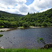 2019-06-07 06-22 Irland 825 Wicklow Mountains, Glendalough, Upper Lake